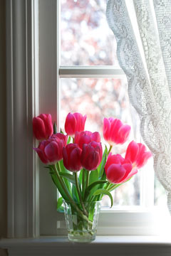 lace curtain and red tulips