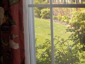 window curtain enhances garden view